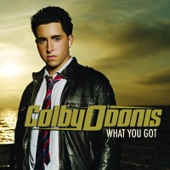 What You Got (feat. Akon) [International Version] - Single