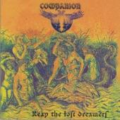 Companion - Blackbird
