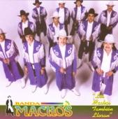 Banda Machos - Mi Luna Mi Estrella con letra