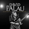 David Palau