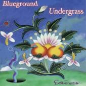 Blueground Undergrass - In This Life