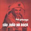 Luiz Gonzaga - Olha Pro Céu  arte
