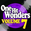 One Hit Wonders - Vol. 7