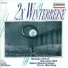 Tabea Zimmermann, Hartmut Holl & Peter Härtling - Winterreise, Op. 89, D. 911 (arr. for viola and piano) : No. 27. Der Leiermann Grafik