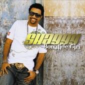Shaggy (feat. Rik Rok & Tony Gold), Shaggy (feat. Rik Rok & Tony Gold) - Bonafide Girl