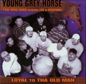 Young Grey Horse - Jingle Dress Song