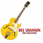 Del Shannon - Needles and Pins