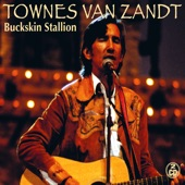 Townes Van Zandt - My Proud Mountains