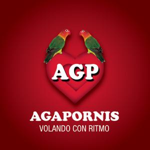 Agapornis - Agapornis - Volando Con Ritmo