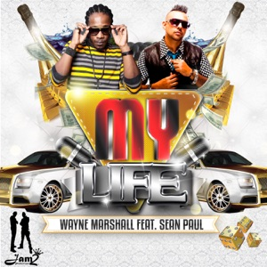 My Life (feat. Sean Paul) - Single Mp3 Download