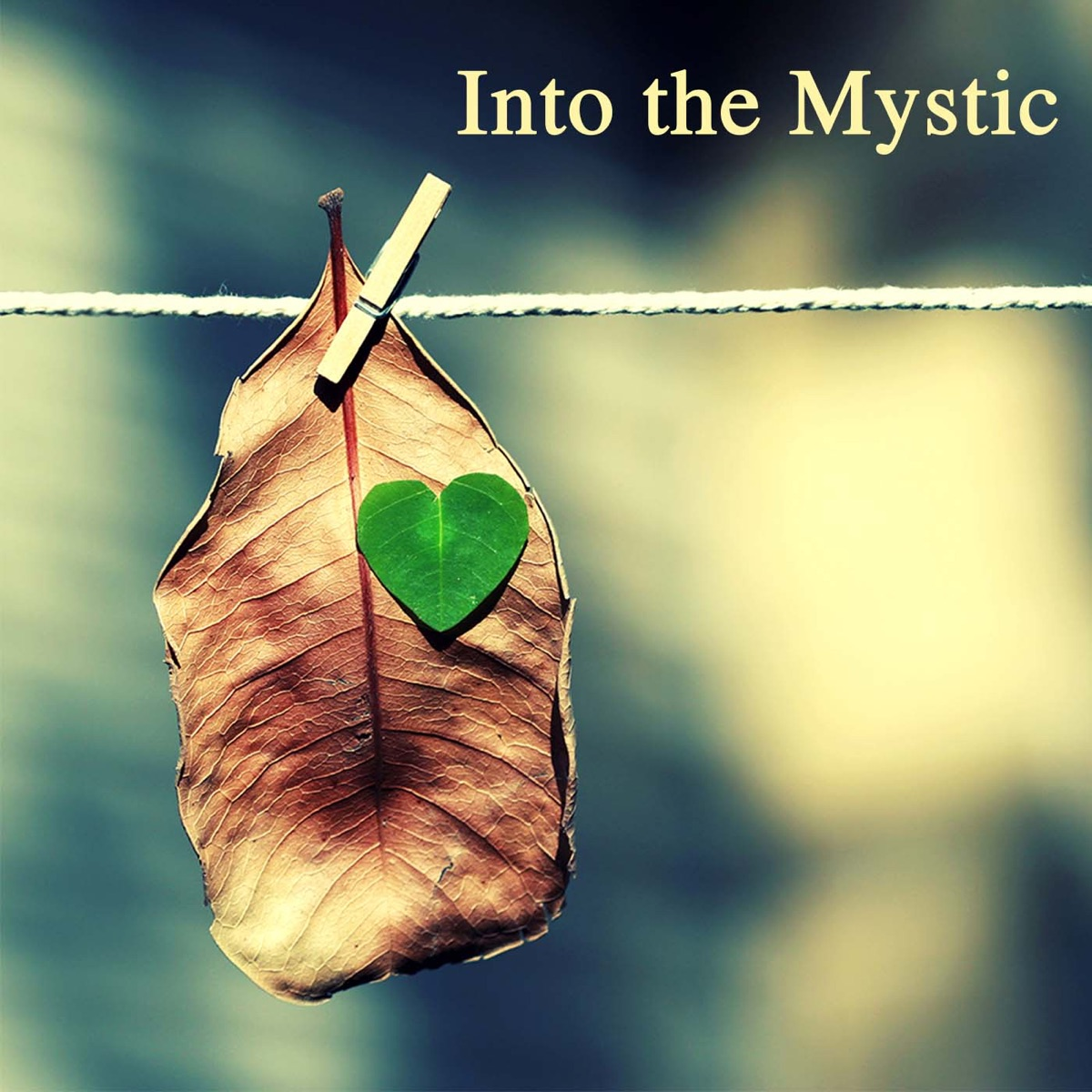 Into the Mystic: Mind & Body Relaxation Meditation Music