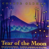 Coyote Oldman - Ziricote