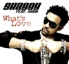 What's Love (feat. Akon) - EP