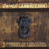 A Cabinet of Curiosities, Jane's Addiction