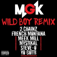 Wild Boy (feat. 2 Chainz, French Montana, Meek Mill, Mystikal, Steve-O & Yo Gotti) [Remix]  - Single - Machine Gun Kelly