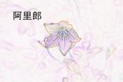 阿裏郎 (Arirang) - 非樂 (Fei Le) - 非樂 (Fei Le)