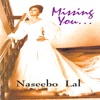 Missing You Vol 1