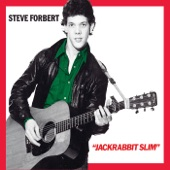Steve Forbert - House of Cards