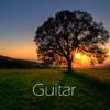 Guitar ジャケット写真