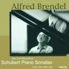 Schubert: Piano Sonatas Nos. 9, 18, 20, & 21 ジャケット写真
