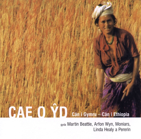 Cover art for Cae O Yd