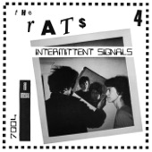 The Rats - animal