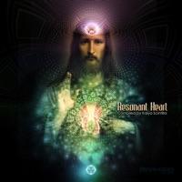 Resonant Heart - Various Artists