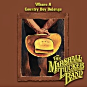 The Marshall Tucker Band - Blue Ridge Mountian Sky
