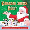 Kinderen Zingen Kerst - 16 Liedjes En 2 Verhaaltjes - Aart Staartjes & TV Kinderkoor