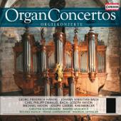 Organ Concerto No. 6 in B-Flat Major, Op. 4, No. 6, HWV 294: I. Andante allegro