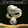 Whitesnake - Day Tripper (2011 Remastered Version) artwork
