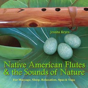 Jessita Reyes - A Hawk Flies Above the Grand Canyon
