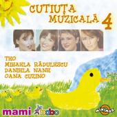 Cutiuta muzicala 4