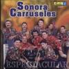 Sonora Carruseles - Adi�s Compay Gato