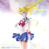 Pretty Guardian Sailor Moon The 20th Anniversary Memorial Tribute - Various Artists