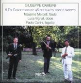 Massimo Mercelli - I. Allegro con grazia