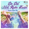 Do Dil Mil Rahe Hain