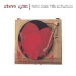 Steve Wynn - Smash Myself to Bits
