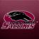 Go Southern Go! - Southern Illinois University Marching Salukis