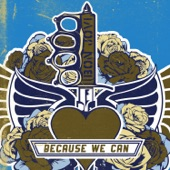 Because We Can - Single