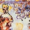 Bob Moses/Billy Martin - DrummingBirds Album