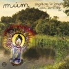 Buy Sing Along to Songs You Don't Know by múm on iTunes (電子音樂)