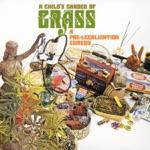 Jack Margolis & Jere Alan Brain - Funniness (LP Version)
