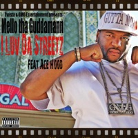 I Luv da Streetz (feat. Ace Hood) - Single Mp3 Download