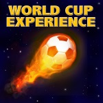 World Cup Experience (South Africa 2010)