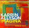 Desafinado (Slightly Out Of Tune)  - Karrin Allyson