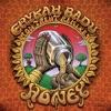 Erykah Badu & Ron Trent - Honey (Ron Trent's Radio Mix)