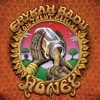Honey (Remixes) - Single ジャケット写真