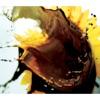光の結晶 - EP ジャケット写真