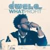 What Profit - Single, Dwele